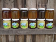 Honey on Shelf (2)