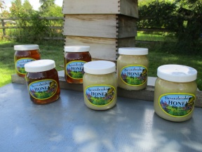 Honey with Hive (2)
