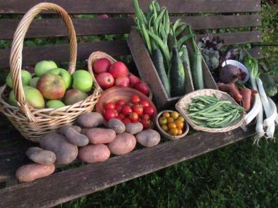Veg on a Bench (4)