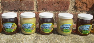 Worcester Honey 4